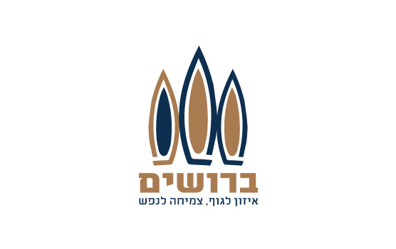 broshim-logo