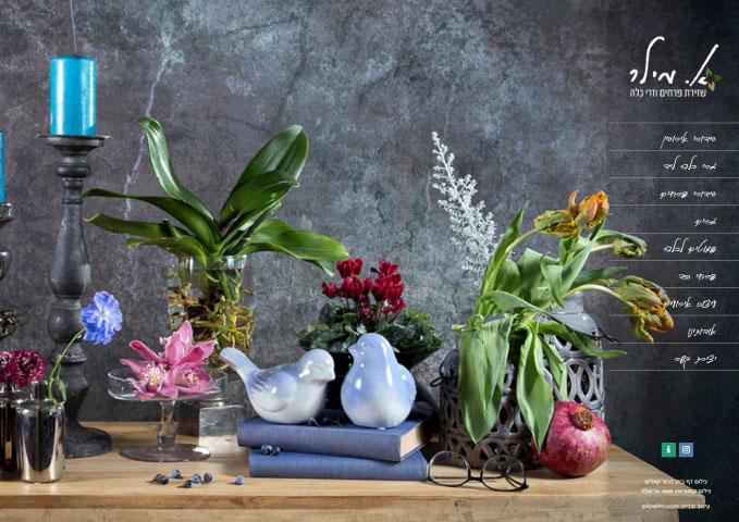 אסתר מילר פרחים – אתר פורטפוליו